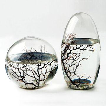 EcoSphere - Large