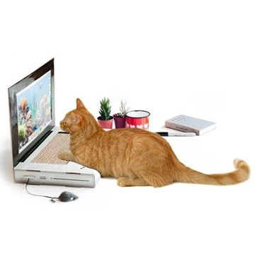 Kitty Laptop Cat Scratch Pad
