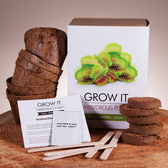 Grow it - Carnivorous Plants