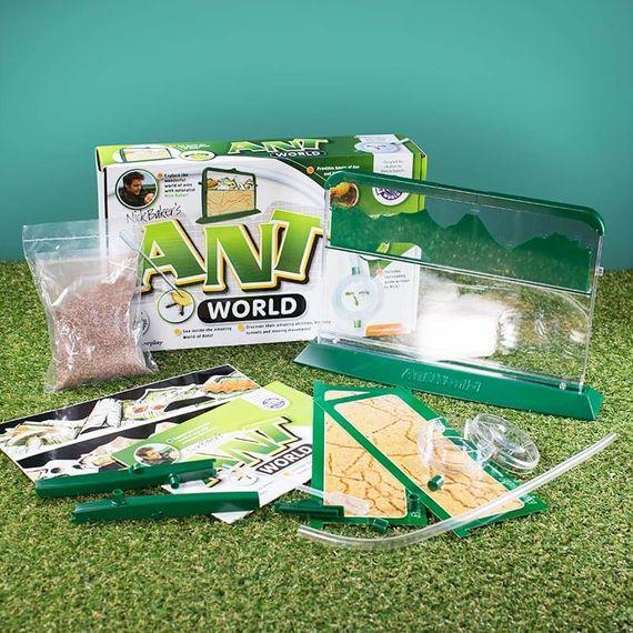 Ant World