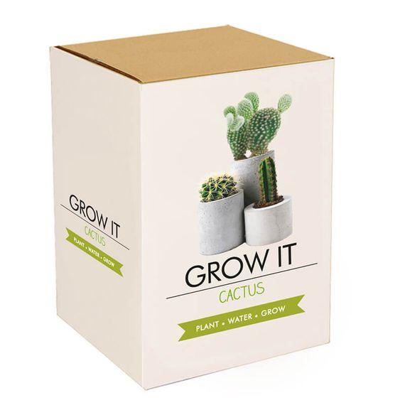 Grow It - Cactus