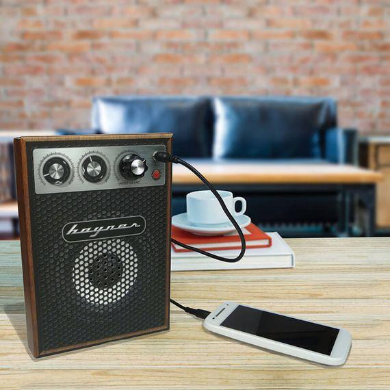 Haynes - Mini Amp Kit