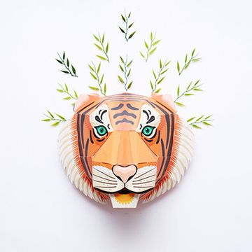 Build a Majestic Tiger Head