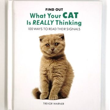 What Your Cat Is Really Thinking