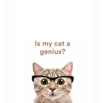 Is My Cat A Genius?