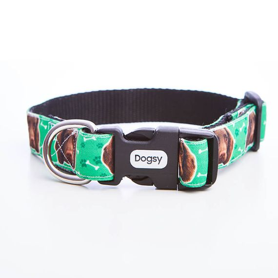 Personalised Photo Dog Collar
