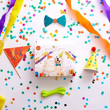 Dog's Birthday Party Kit