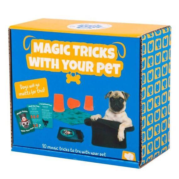 Magic Tricks With Your Pet