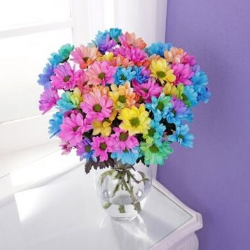 Personalised Rainbow Chrysanthemums