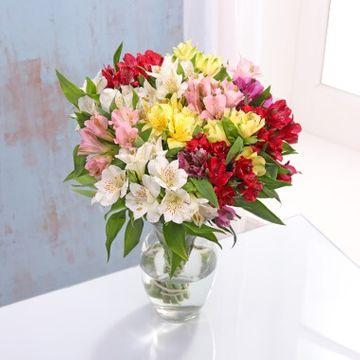 Multi-Coloured Alstroemeria Bouquet