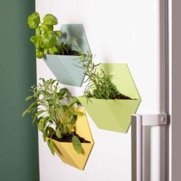 Magnetic Plants Pots