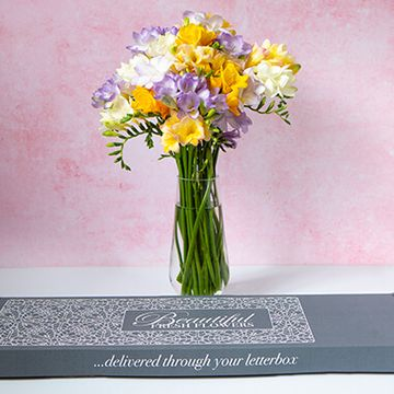 Personalised Letterbox Freesias