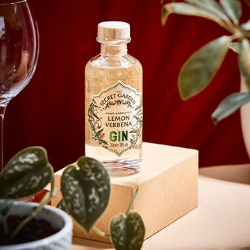 The Old Curiosity Secret Garden Gin - Lemon Verbena - 20cl