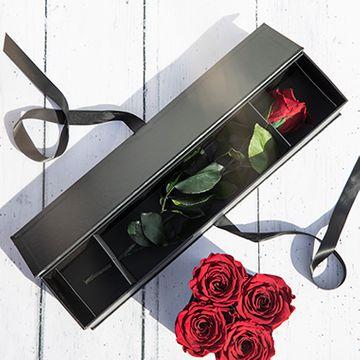 One Year Long Stem Single Rose