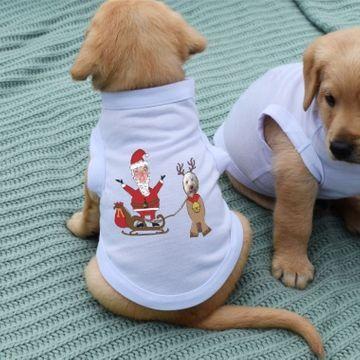 Personalised Santa & Reindeer Photo Dog T-Shirt