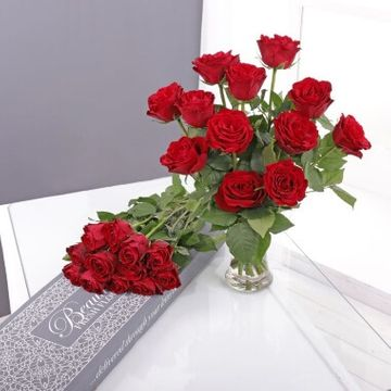Letterbox Red Roses
