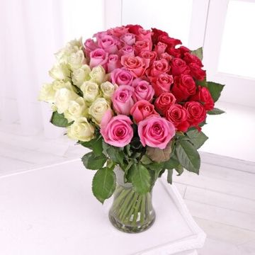 50 Ombre Roses